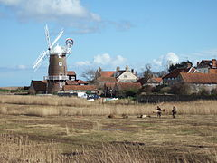 Windmill Reed beds Cley.jpg