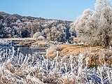 Winter-Regnitz-PC310036.jpg