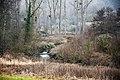 Wurm und Wurmtal - Städteregion Aachen - Nordrhein-Westfalen. 02.jpg