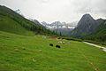 Xiaojin, Aba, Sichuan, China - panoramio (13).jpg