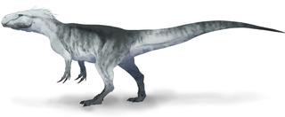 <i>Xuanhanosaurus</i>