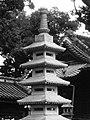Yahachi-50.jpg