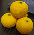 Yuzufruits.jpg