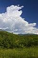 'Nubi torreggianti osservate' - panoramio.jpg