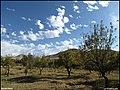 (((منظره پاییزی ))) - panoramio.jpg