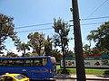 (El Centro Histórico de Quito) pic.bbb03999.jpg
