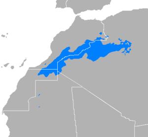 Algerian Saharan Arabic - Image: Árabe sahariano