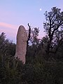 Étangs de La Jonquera - Menhir dels Estanys II - 3.jpg