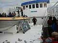 Östersund fiskar.jpg