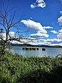 Η λιμνη με τους 'αγκυροβολημενους' καλαμιωνες.jpg