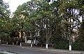 Інститут гематології та трансфузіології. Вид з вулиці.JPG