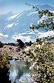 Альплагерь «Артуч» 79 (26) Куликалонские озера.jpg