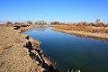 Вид на реку Илек в северном направлении - panoramio.jpg