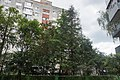 Заповідний куточок імені Миколи Чайковського 61-101-5002.jpg