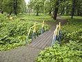 Маленький міст у парку.jpg