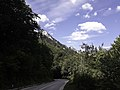 Национални парк Сутјеска 04.jpg