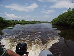 На реке Обор.jpg