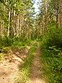 Нечкинский национальный парк - panoramio.jpg