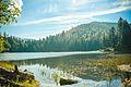 Озеро Синевир 6.jpg