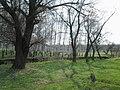 Рощица возле Корсуни - panoramio.jpg