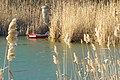 Стара Тиса код Чуруга4.jpg