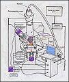 Схема работы Ближнепольного оптического микроскопа +.JPG