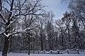 Чорний Ліс (зоологічний заказник).jpg
