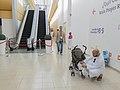 معرض الشارقة الدولي للكتاب Sharjah International Book Fair 36.jpg