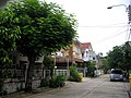 ถนนในหมู่บ้านลลิลกรีนวิลล์ ซ.3 - panoramio.jpg
