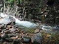 อุทยานแห่งชาติน้ำตกพลิ้ว จ.จันทบุรี (41).jpg