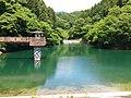 八重桐の池 - panoramio.jpg