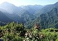司馬庫斯 Smangus - panoramio.jpg