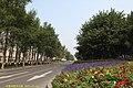 宽平大路 Kuan Ping Da Lu - panoramio.jpg