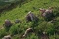 山上的石头 - panoramio.jpg