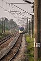 拔林車站 (15780359765) (2).jpg