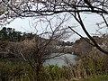 汐見台七丁目の池 - panoramio.jpg