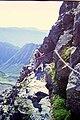 涸沢岳に登る2 - panoramio.jpg