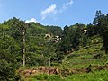 灯笼挂壁村 - Lantern Village - 2014.07 - panoramio.jpg