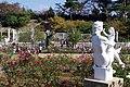 生田緑地ばら苑 Ikuta-ryokuchi RoseGarden - panoramio.jpg