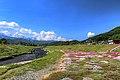 農具川河川公園 - panoramio (1).jpg