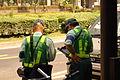 駐車監視員 警視庁 (708971949).jpg