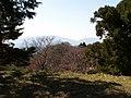高取城跡(takatorijyou ato) 2010-3-19 - panoramio - ys1979 (10).jpg