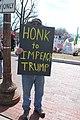 01.ImpeachTrump.LafayettePark.WDC.20February2017 (32642022360).jpg