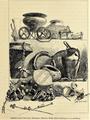 01894 Kronprinzenwerk, Geschichte Böhmens (1. Ab.), Hallstatter und La Tène -Zeit .. Opferwagen, Schwerter, Gefäße, Fibeln, Armringe u.s.w. aus Bronze.png