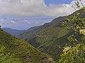 04-08-2019 Madeira Juli 2019 0178 (48905202452).jpg