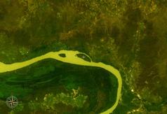 NASA-World-Wind-Satellitenbild:Der Gambia fließt im Bildausschnitt Richtung Westen. Der Gassang Forest Park liegt auf der Fluss-Nordseite im Knick nach Westen.