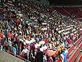 15. sokolský slet na stadionu Eden v roce 2012 (3).JPG