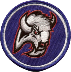 177th Airlift Squadron - Image: 177th Airlift Squadron Emblem