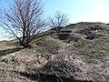 18 марта 2015 Могила Лисовская - panoramio.jpg