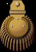 Генерал-лейтенант флота